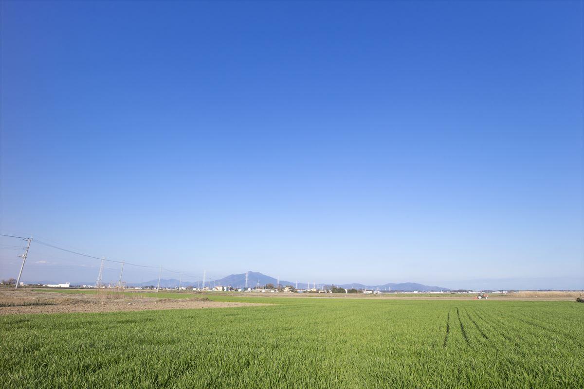茨城県西エリア